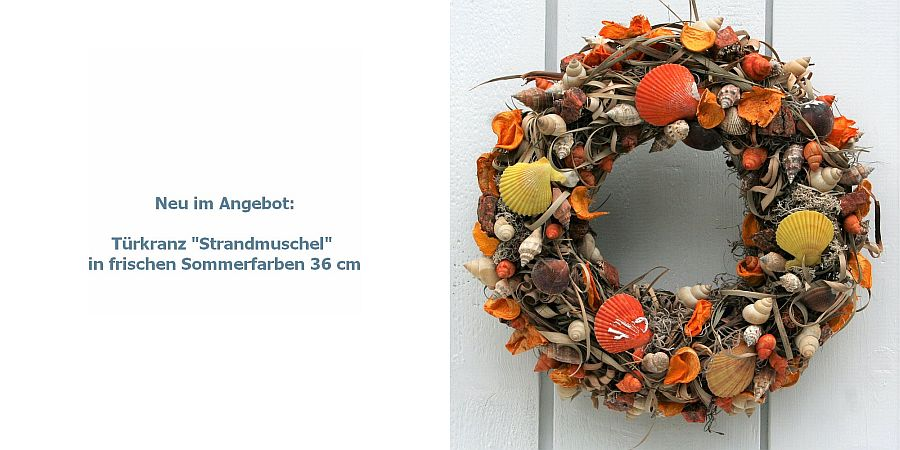 Tuerkranz-Strandmuschel-in-frischen-Sommerfarben-36-cm